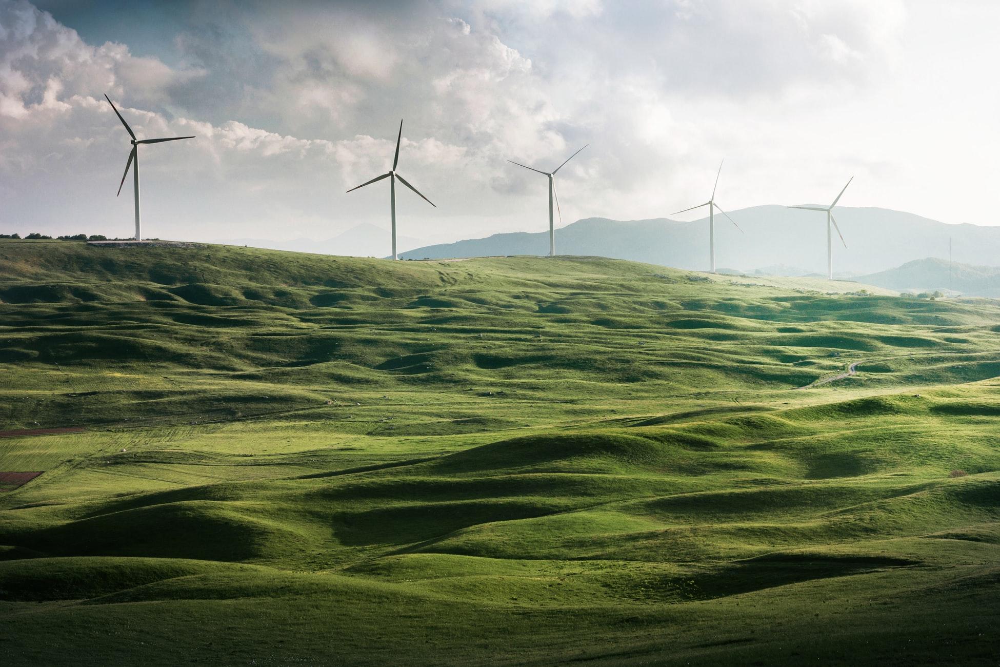 Collines verdoyantes avec 5 éoliennes